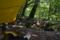 森の居場所