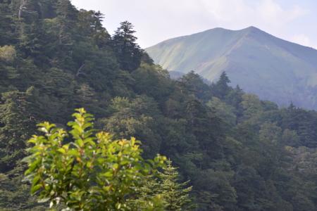 f:id:kurokoshusaru:20150909191313j:image