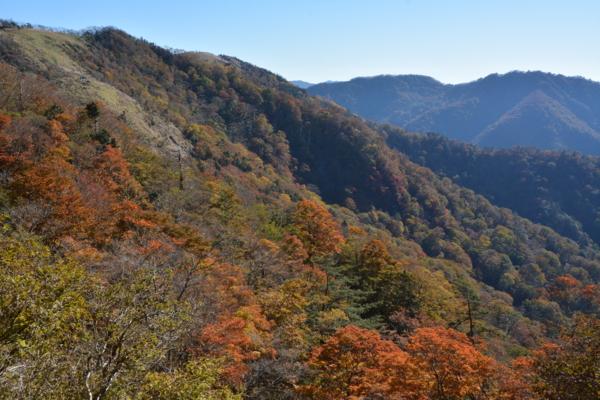 f:id:kurokoshusaru:20151021191151j:image