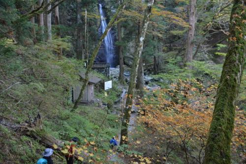 f:id:kurokoshusaru:20151027193103j:image