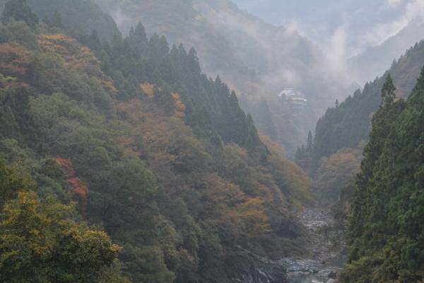 f:id:kurokoshusaru:20151109171300j:image
