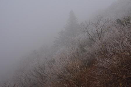 f:id:kurokoshusaru:20151113175420j:image