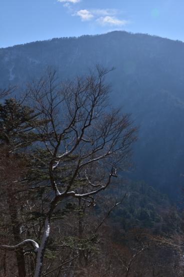 f:id:kurokoshusaru:20151208181636j:image