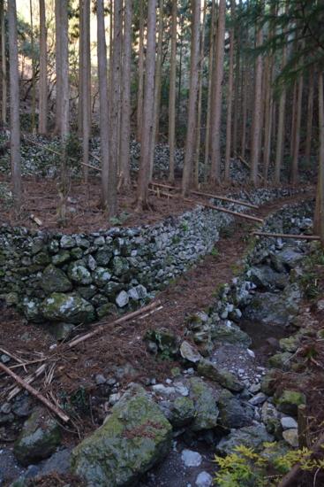 f:id:kurokoshusaru:20151221174437j:image