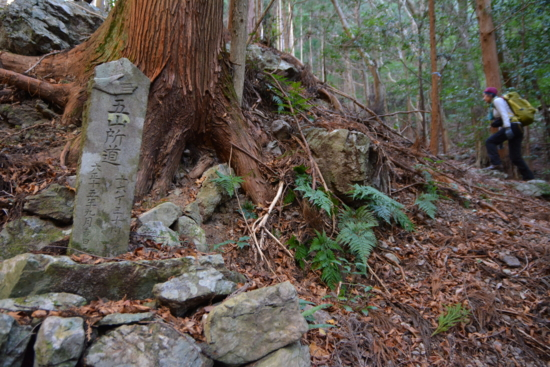 f:id:kurokoshusaru:20151221174747j:image