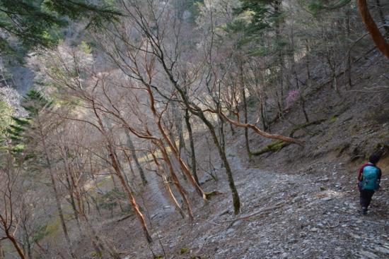 f:id:kurokoshusaru:20160418185718j:image
