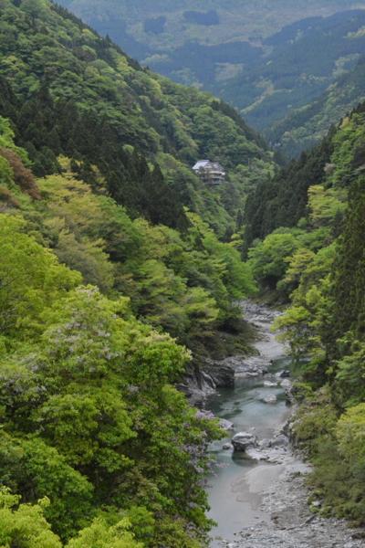 f:id:kurokoshusaru:20160506204154j:image