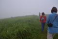 草原となる