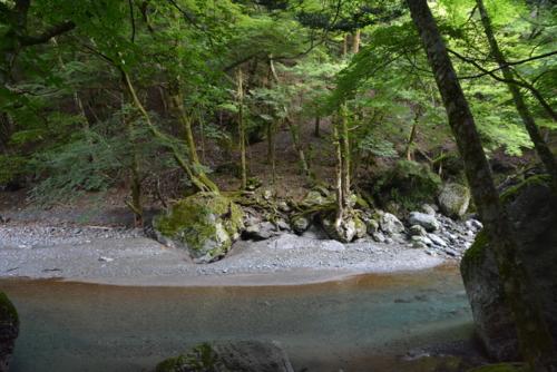 f:id:kurokoshusaru:20160816190051j:image