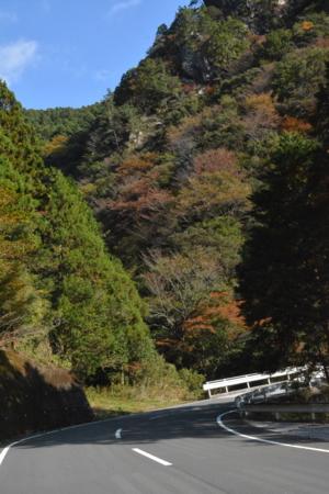 f:id:kurokoshusaru:20161114191433j:image