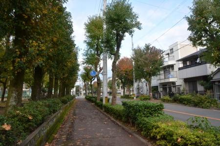 f:id:kurokoshusaru:20161127173648j:image