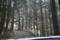 林道を走る