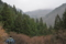 龍王の滝登り口