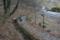 福寿草の里