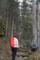 杉林から (2)
