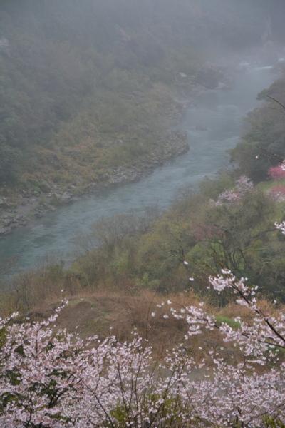f:id:kurokoshusaru:20170410191909j:image