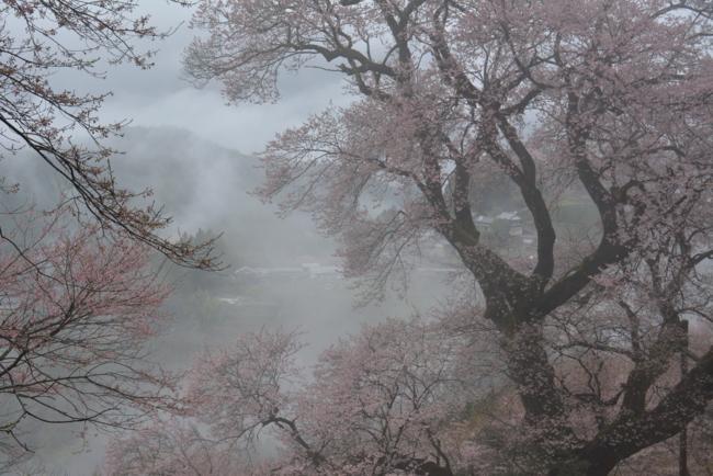 f:id:kurokoshusaru:20170412183717j:image