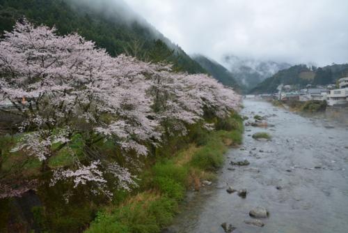 f:id:kurokoshusaru:20170414192426j:image
