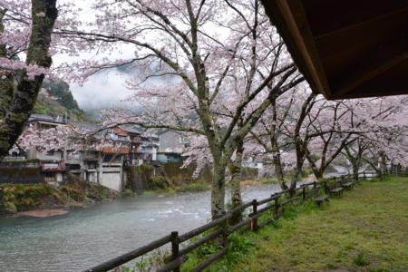 f:id:kurokoshusaru:20170414192633j:image