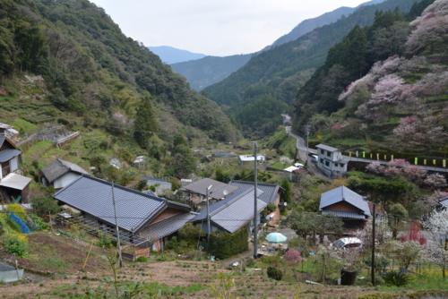 f:id:kurokoshusaru:20170416171911j:image