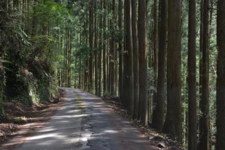 f:id:kurokoshusaru:20170417192211j:image