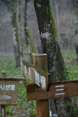 f:id:kurokoshusaru:20170421173807j:image