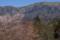 桜と西熊山