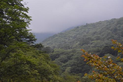f:id:kurokoshusaru:20170730175916j:image