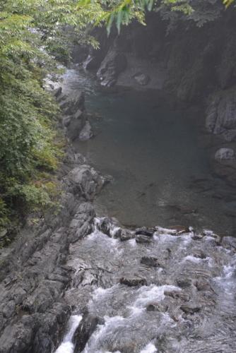 f:id:kurokoshusaru:20170731191736j:image