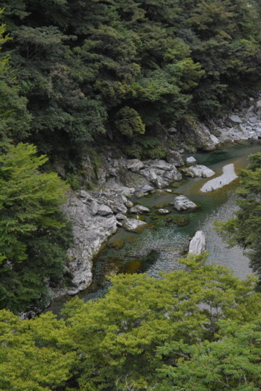 f:id:kurokoshusaru:20170906181307j:image