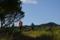皿ヶ峰の山頂