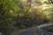 石鎚公園線