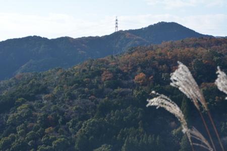 f:id:kurokoshusaru:20171212190243j:image