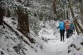 新雪を踏む