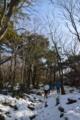 残雪の森へ