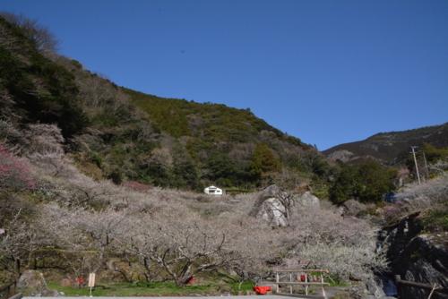 f:id:kurokoshusaru:20180322192626j:image