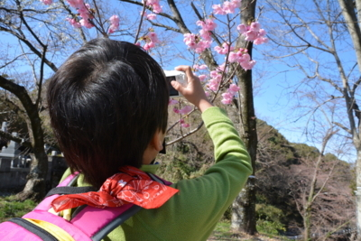 f:id:kurokoshusaru:20180323190317j:image