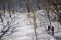 名残雪の道