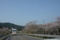 仁淀川を遡る