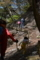 森へ登る (2)