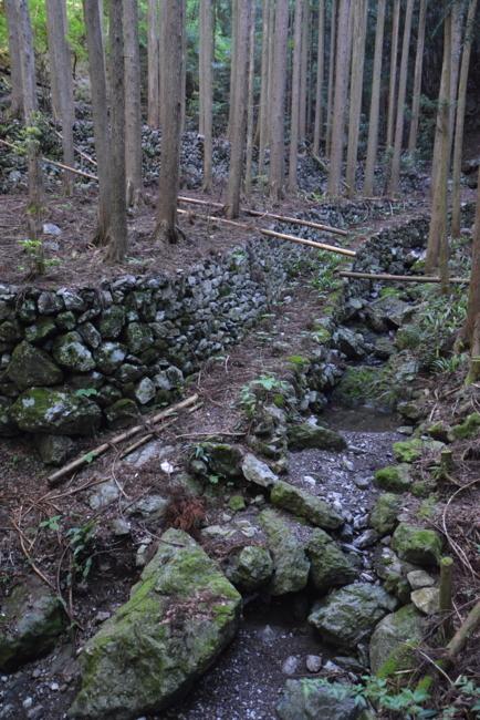 f:id:kurokoshusaru:20180622181042j:image