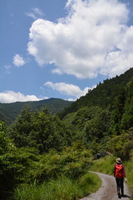 f:id:kurokoshusaru:20180625191844j:image