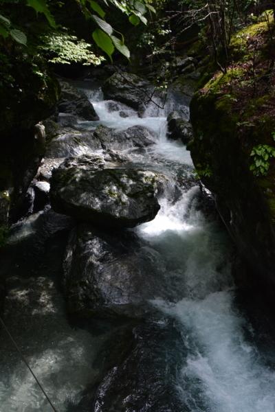 f:id:kurokoshusaru:20180629224945j:image