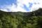 奥物部の森