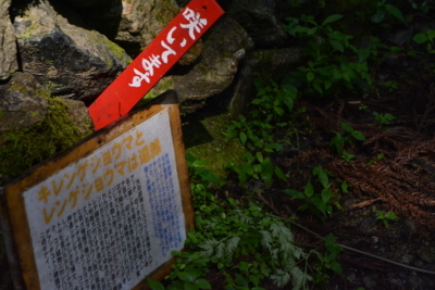 f:id:kurokoshusaru:20180805083425j:image