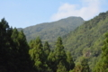 梶ヶ森山頂部
