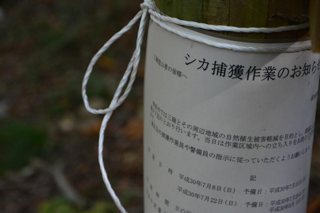 f:id:kurokoshusaru:20181023184404j:plain
