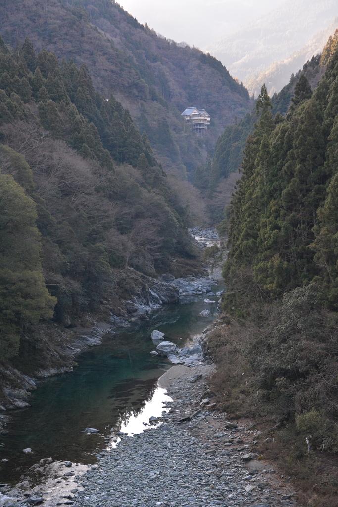 f:id:kurokoshusaru:20190310162505j:plain