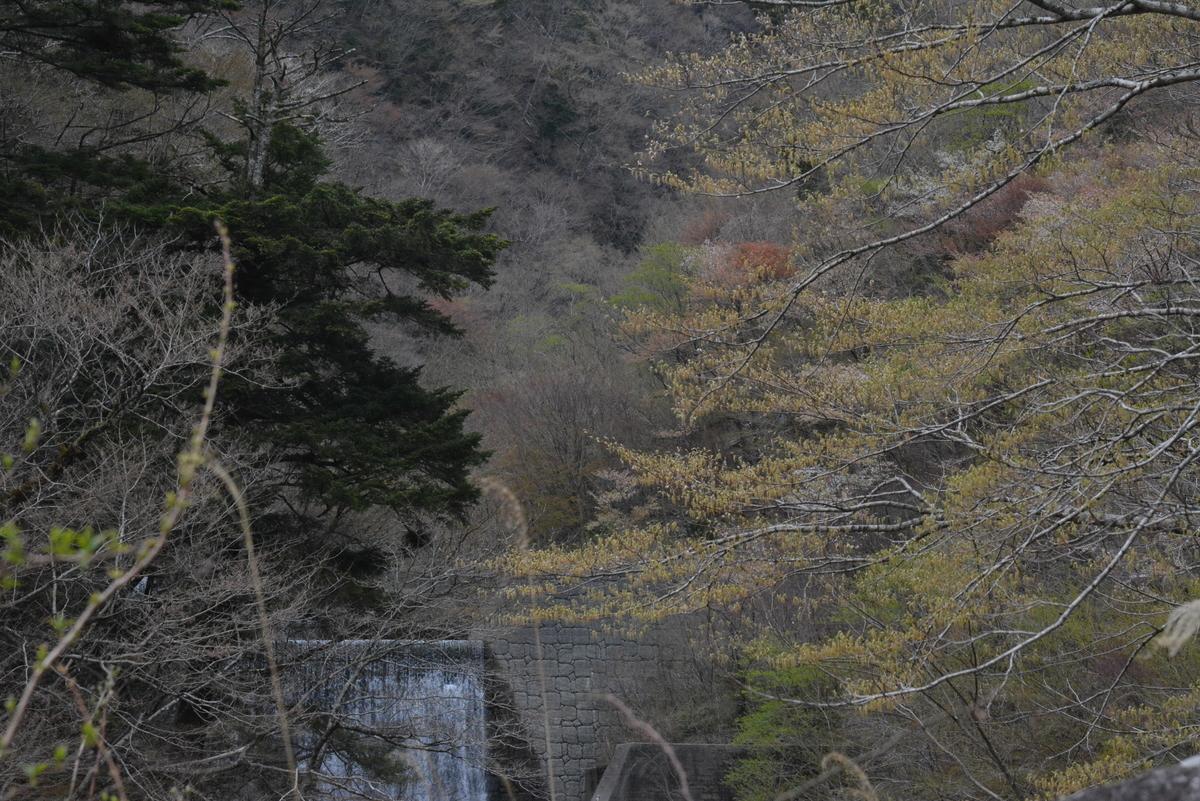 f:id:kurokoshusaru:20190414211914j:plain
