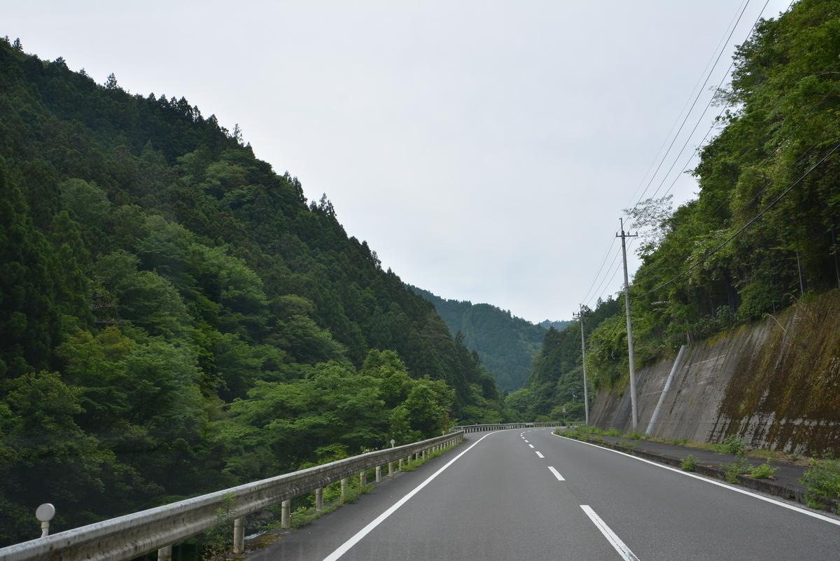 f:id:kurokoshusaru:20190602082916j:plain